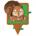 Squirrel Physical Icon