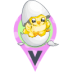 White Hatched Egg